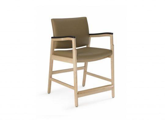 Monarch Easy Access Chair